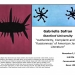 Flyer for Gabriella Safran talk